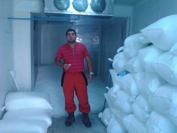 Chile 5 tons